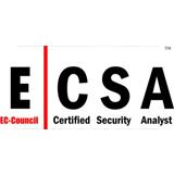 دوره ECSA